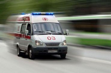 У16-летней жительницы Ленобласти погибла дочь
