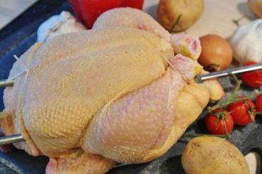 Эксперты нашли смертельно опасное куриное мясо впетербургских магазинах