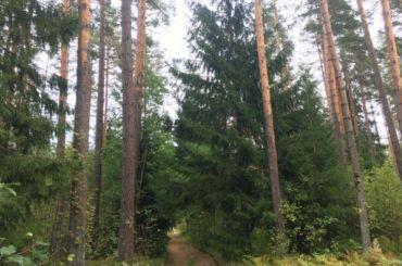 Колосково иОрехово хотят лес иземлю
