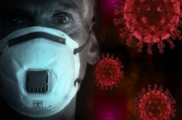 Снова растем: Засутки вПетербурге коронавирусом заразились 237 человек