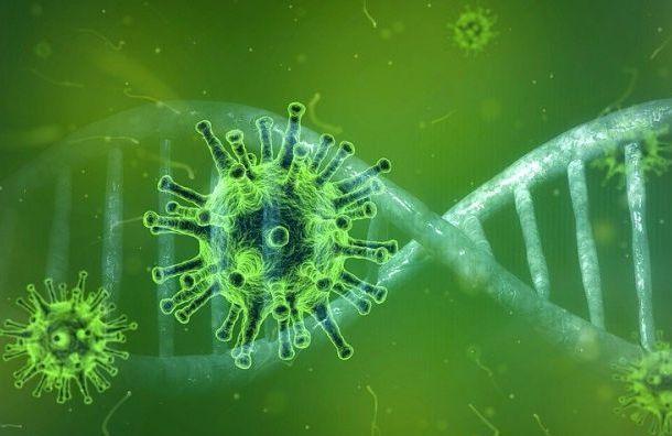 Каждый пятый переболевший коронавирусом теряет антитела