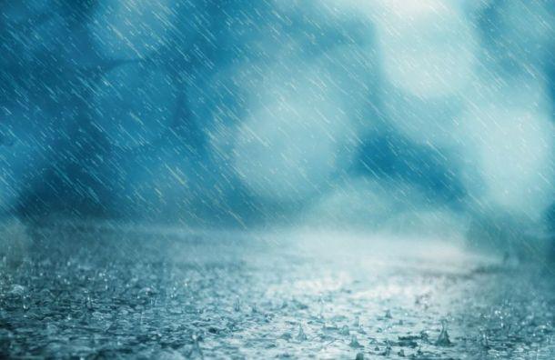 Петербург в пятницу ждет сильный ветер и дождь