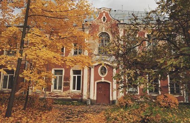 Больница Петра Великого возобновила прием больных COVID-19