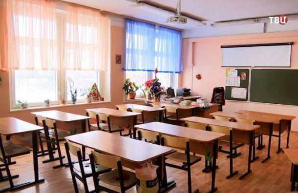 Надистанционное обучение вПетербурге перевели 118 классов в59 школах