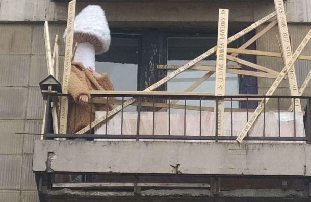 Несколько дней подряд напетербургском балконе вполдень появлялся гриб