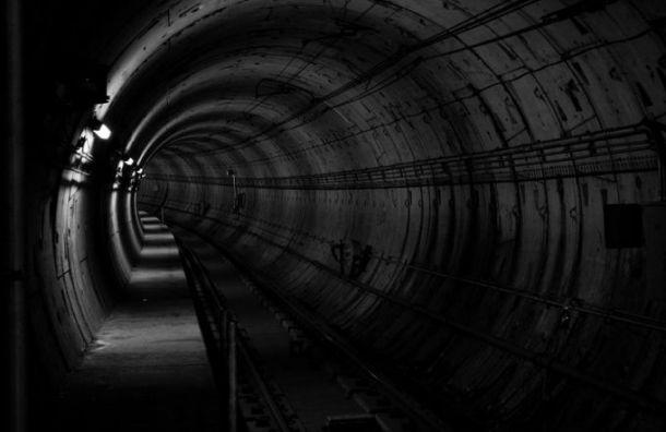 Планировку ветки метро доаэропорта Пулково закончат доиюня 2022 года