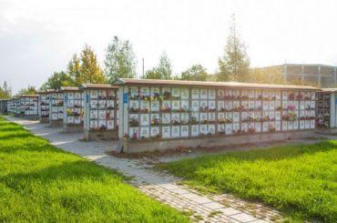Данные околичестве погибших вПетербурге откоронавируса подвергли сомнению