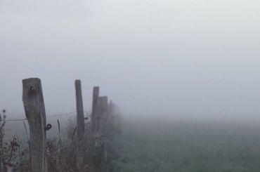 Рейсы изЧелябинска вПетербург задержали из-за тумана