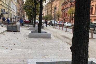 Деревья наЧайковского заковали вбетон