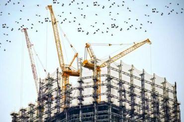 Три общежития СПбГУ построят вустье Смоленки