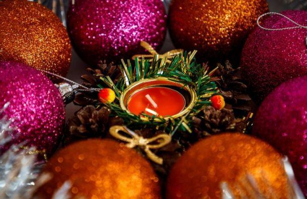 Башкетова: Новогодних праздников вПетербурге небудет