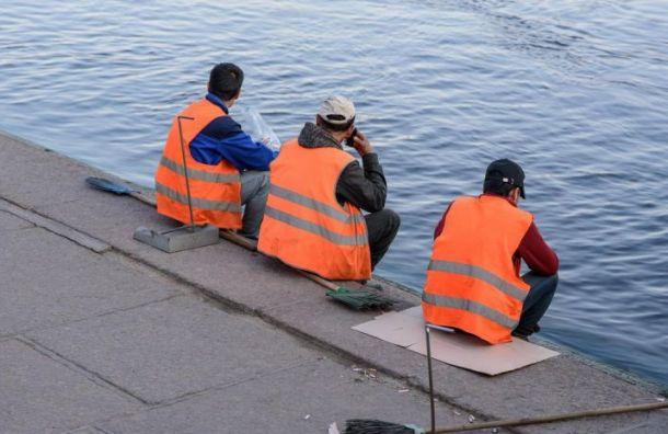 ВПетербурге обнаружили 19 резиновых квартир смигрантами