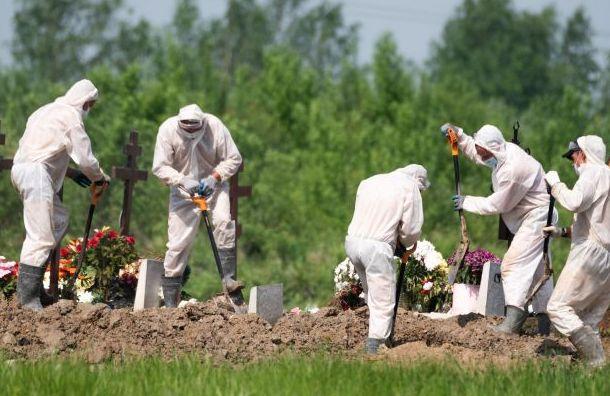 ВПетербурге резко возросло число смертей откоронавируса
