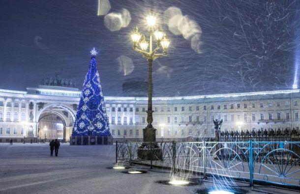 Главную елку установят наДворцовой площади 7декабря