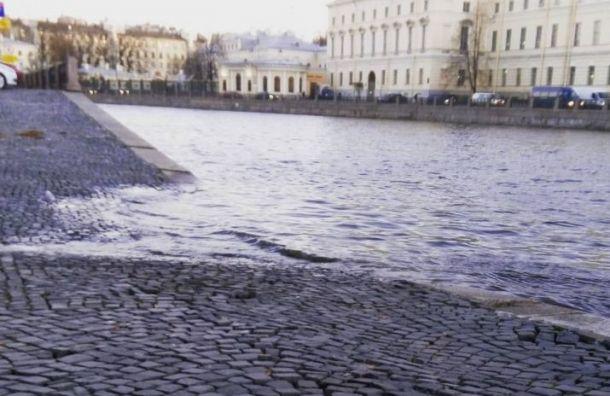Петербуржцев ожидает ветреный инеобычайно теплый для ноября день