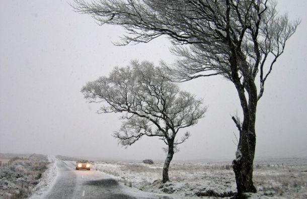 Петербург впятницу ждут шторм, дождь имокрый снег