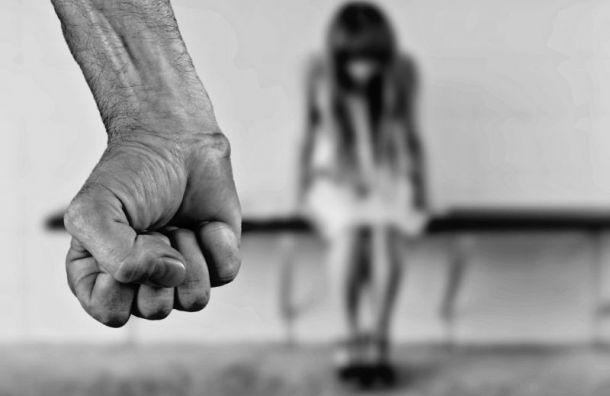 Неизвестный напал на12-летнюю девочку вЛенобласти