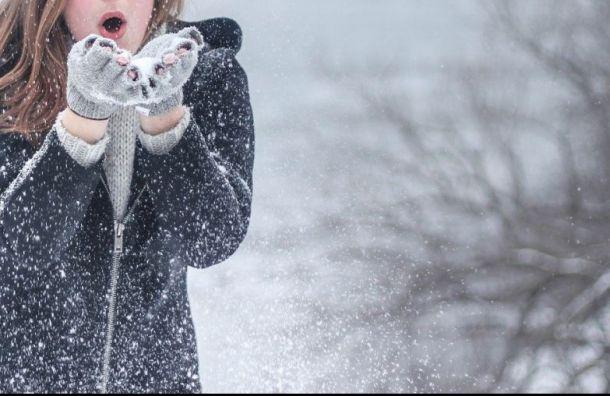 Петербург ввоскресенье заметет снегом