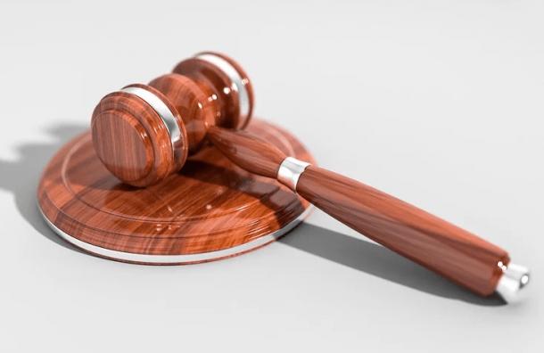 Суд отказался штрафовать активиста, пришедшего кЗакСу вкостюме гроба