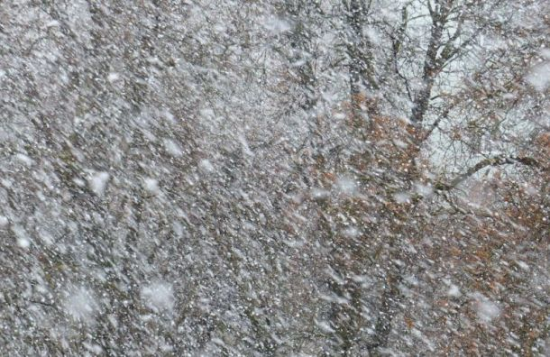 Петербуржцев ожидает шторм смокрым снегом исильным ветром всреду