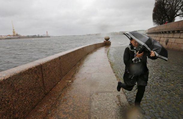 Сильный ветер помешает петербуржцам навыходных