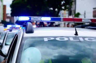 Силовики задержали подозреваемого втеракте вВене