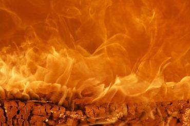 Пожилой мужчина погиб при пожаре под Всеволожском