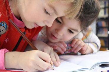 Формат обучения школьников в Петербурге определят