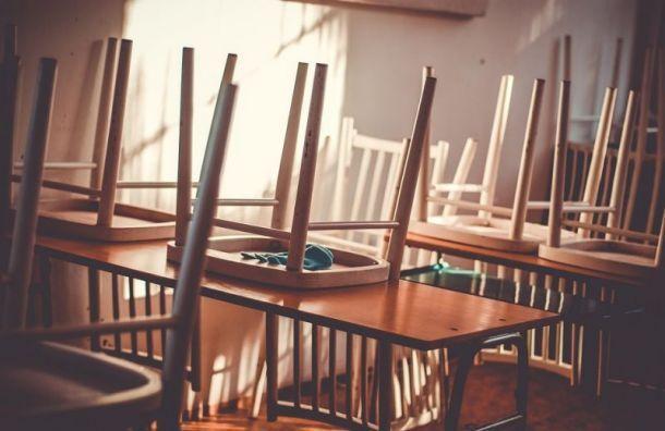 Более 12 тысяч петербургских школьников перешли насмешанный формат обучения