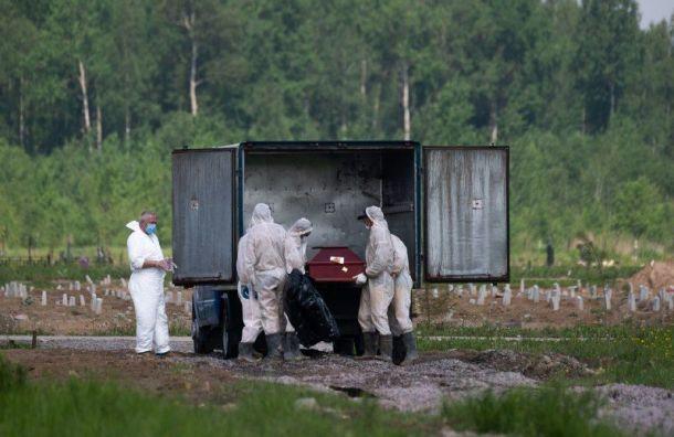 Подтверждено рекордное количество смертей отCOVID-19 вПетербурге