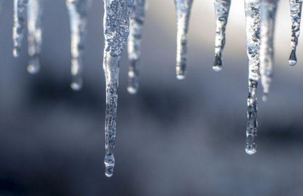 Мокрый снег игололед ожидают жителей Ленобласти всреду