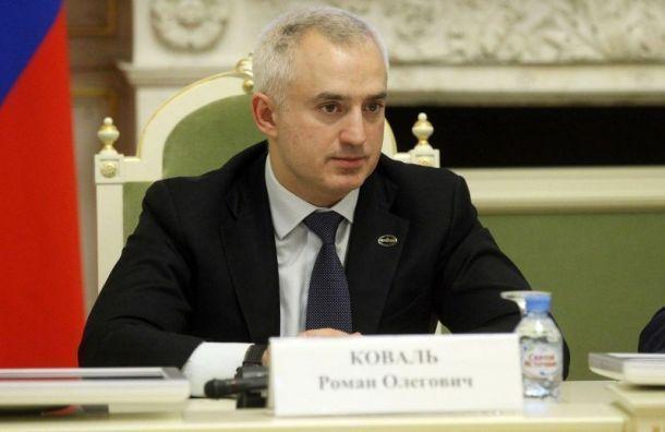 Депутат петербургского ЗакСа Роман Коваль признался вполучении взятки