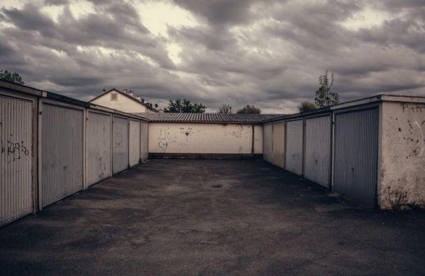 Наркоплантацию в гаражах накрыли в Ленобласти