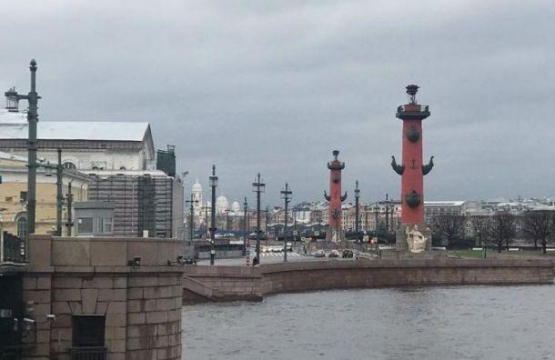 Ветреная иоблачная погода придет вПетербург 5декабря