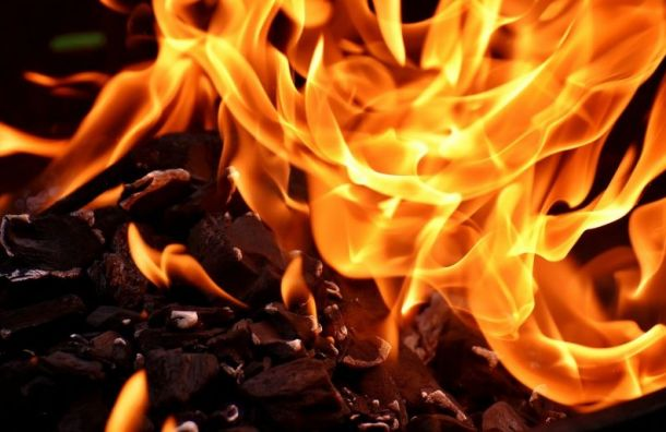 Житель Петербурга погиб внабитой мусором квартире