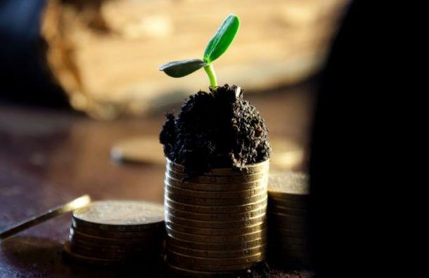 Задолженность позарплатам вПетербурге достигла почти 125 млн рублей