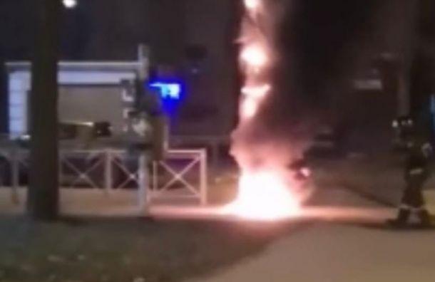 Петербуржцы увидели охваченный огнем светофор