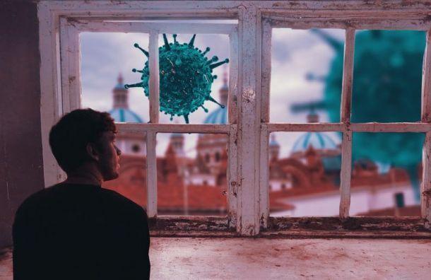 Башкетова: Петербург вторую неделю «стоит» позаболеваемости COVID-19