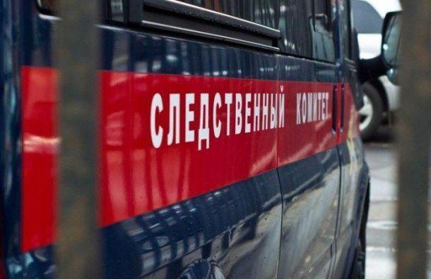 СКР займется делом онаезде автомобиля Генконсульства Литвы напетербурженку