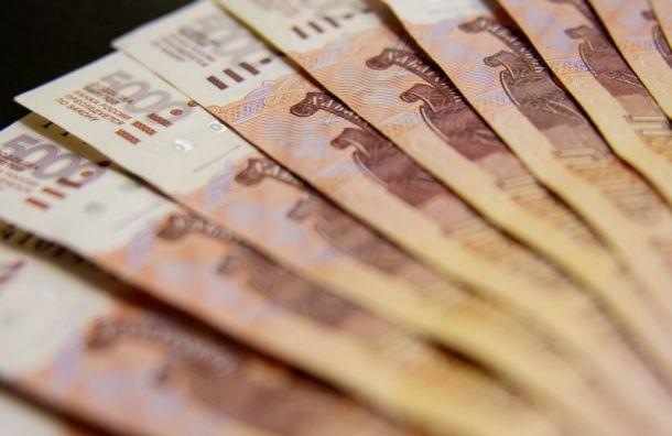 Петербуржцам рассказали, как получить новогодние выплаты надетей