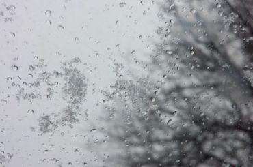 Жителей Ленобласти предупреждают оледяном дожде вближайшие дни