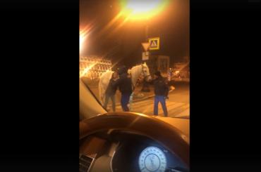 Охрана Заксобрания напала надевушку-наездницу