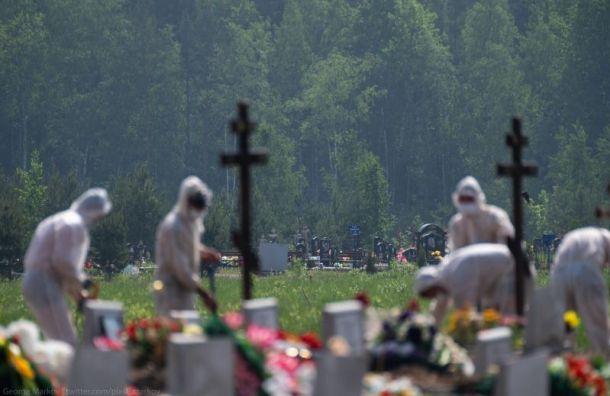 Россия обновила рекорд посуточный смертности сначала пандемии