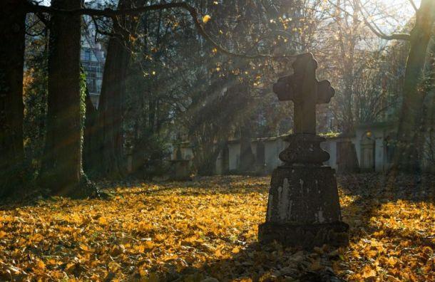 Голикова озвучила число погибших откоронавируса россиян
