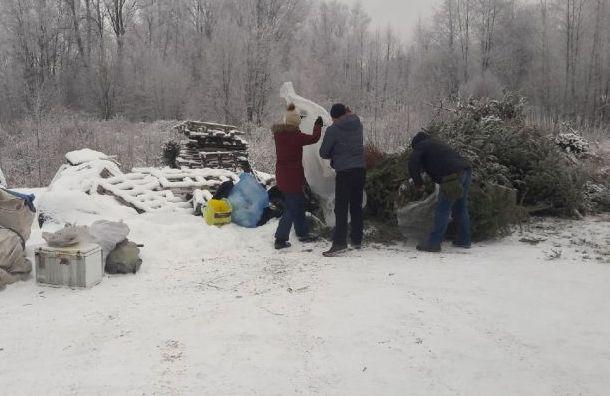 Петербуржцы сдали завыходные напереработку более 3 тысяч елок