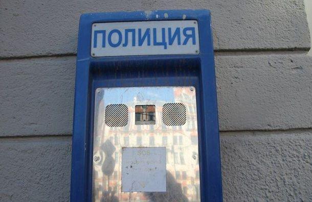 Петербуржец избил официантку вкафе наплощади Труда заотказ налить водку