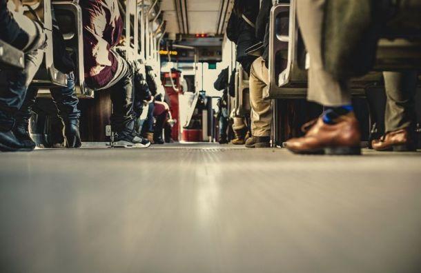 Мурино истанцию «Проспект Просвещения» свяжут новые автобусные рейсы