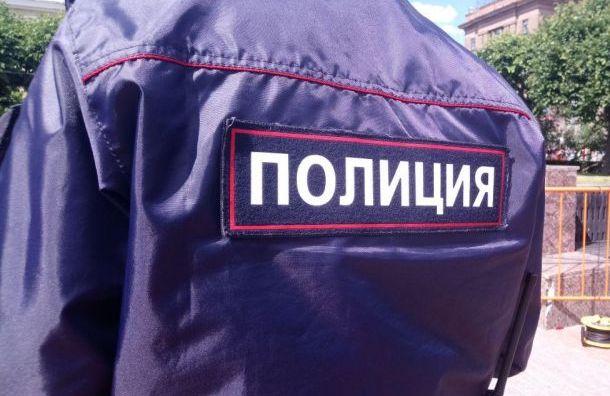 Полицейские извинились перед избитой намитинге петербурженкой