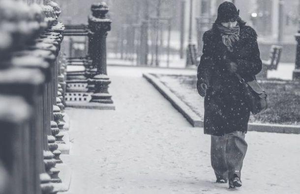 Снегопад иметель испортят петербуржцам настроение 21января