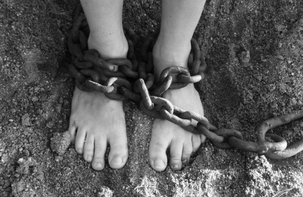 Полицейские поймали мигранта, изнасиловавшего 12-летнюю девочку